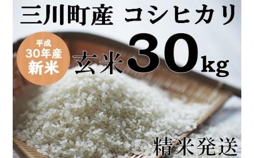 128 坂農園の厳選米!三川町産コシヒカリ玄米30kg(精米発送)