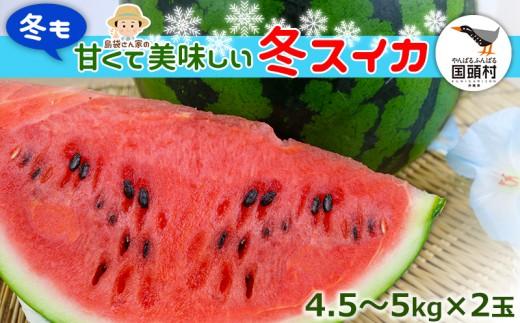 【2019年2月発送!】国頭マージ 赤土「冬スイカ」4.5~5Kg×2玉