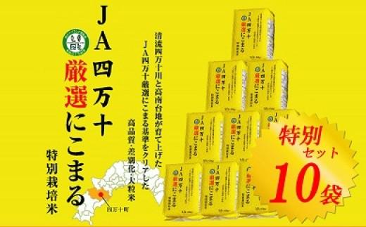 【感謝祭】新米特別セット!お米マイスター監修の今選ぶべきブランド米10袋 Qjs-1101