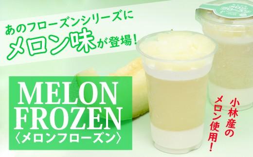 【小林産メロン使用】メロンフローズン 30-3012