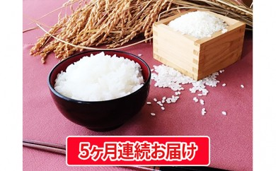 [№5784-0197 ]【特別栽培米】豊かなお米・コシヒカリ・5キロ精白米5ヶ月連続