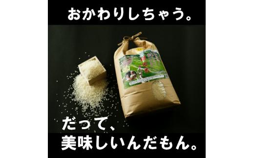 b-38  平野棚田米夢しずく(玄米)10kg