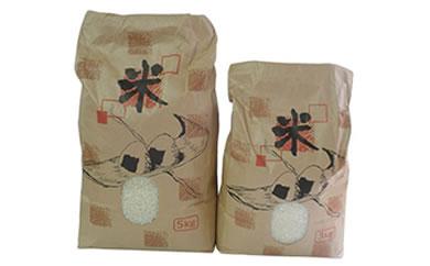 【数量限定100個】能登の潮騒米(平成30年産コシヒカリ)