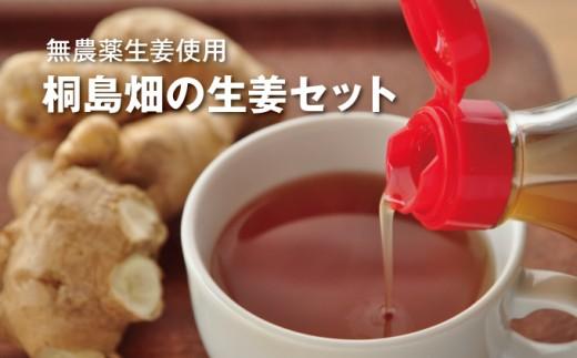 【感謝祭】無農薬生姜使用ビリリと刺激的!桐島畑のたっぷり生姜セット Fkh-0301