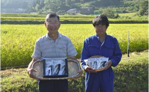 米粉100%麺 田守り麺(100g入×14袋)