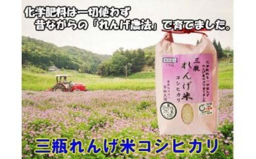 【新米の募集開始!】特別栽培米 三瓶れんげ米コシヒカリ(平成30年産)10kg