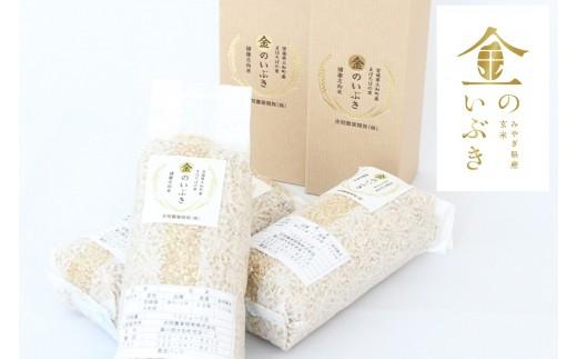 金のいぶき(贈答用) 玄米 5合×2袋・5合×2箱