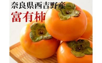 [№5745-1089][本場の柿]奈良・西吉野の富有柿Lサイズ約7.5kg