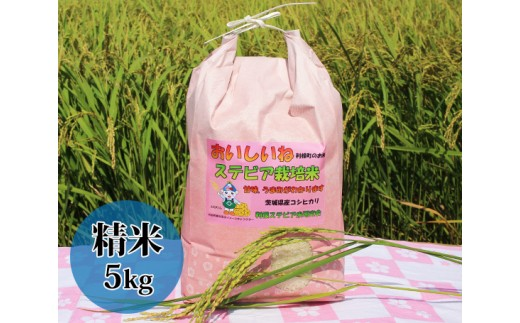 No.023 利根町産ステビア栽培米(コシヒカリ 精米)5kg