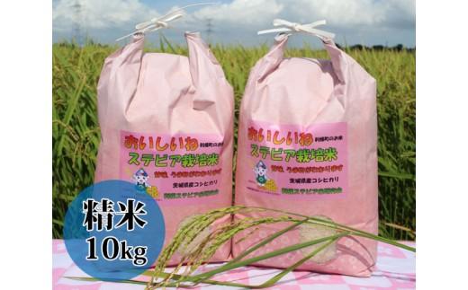 No.025 利根町産ステビア栽培米(コシヒカリ 精米)10kg