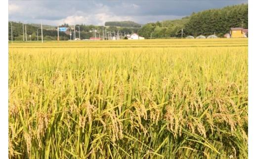 [008-01]美景農園 平成30年米 美瑛産ななつぼし5㎏