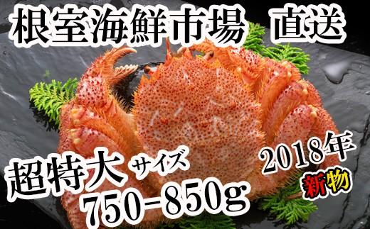 CA-42057 ゆで毛ガニ750~850g×1尾
