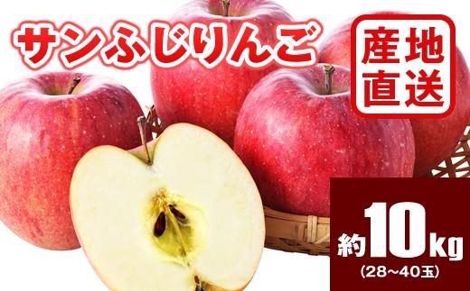 B524 【産地直送】サンふじリンゴ 約10kg