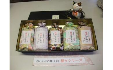 大切な人への贈り物に。勝山のお米 贈答品包装 5袋セット