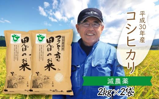 B-20 【H30新米】〈村上ファーム〉特別栽培米 コウノトリ育む田んぼのお米 2kg×2袋