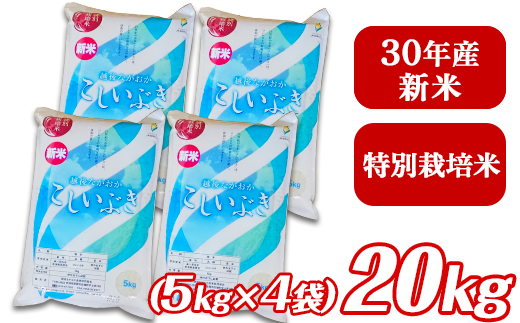 3-049【H30年産】新潟県長岡産こしいぶき20kg(5kg×4袋)