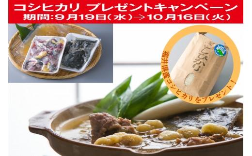 E3 若狭すっぽん鍋セット(3~4人前分)[髙島屋選定品]CP