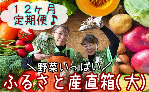 HMG253 【旬野菜お届け】八幡平のふるさと産直箱(大)12ヶ月定期便