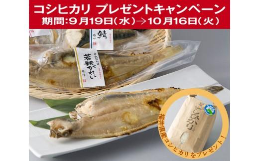 B1 焼魚三昧 優(焼魚真空パック)[髙島屋選定品]CP