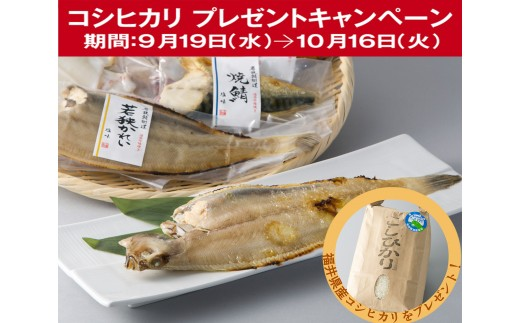 D2 焼魚三昧 誉(焼魚真空パック)[髙島屋選定品]CP