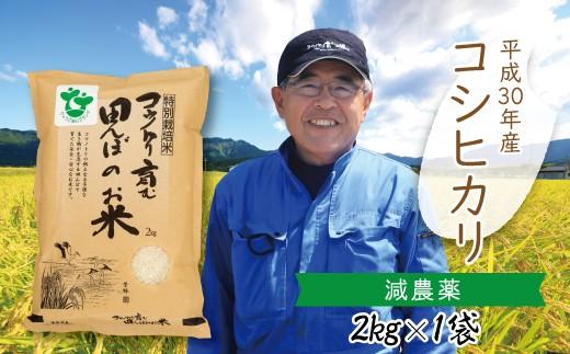 A-11 【H30新米】〈村上ファーム〉特別栽培米コシヒカリ 2㎏×1袋