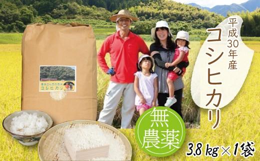 B-23 【H30新米】高本さんちのコウノトリ育む農法(農薬不使用)のお米 3.8kg