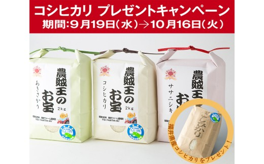 B4 農賊王のお宝 特別栽培米3種セット[髙島屋選定品]CP