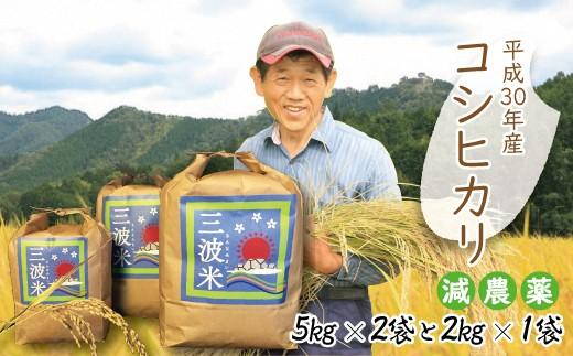 D-28 H30新米【減農薬】三波農地を守る会のコシヒカリ12㎏