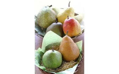[№5800-0151]最高級 西洋梨詰合せ約4kg・大玉 蔵王産