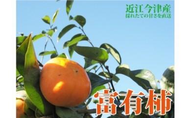 ◆【2018年産・旬の発送予約】近江今津の富有柿 2L 4kg 1箱 12玉<生産者直売一貫体制>