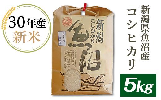 【H30年産】新潟県魚沼産(長岡川口地域)コシヒカリ5kg