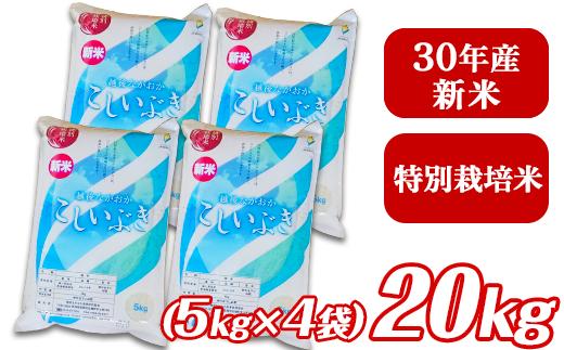 【H30年産】新潟県長岡産こしいぶき20kg(5kg×4袋)