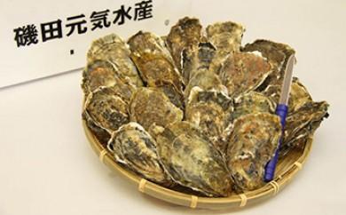厚岸産殻付き牡蠣 Lサイズ20個