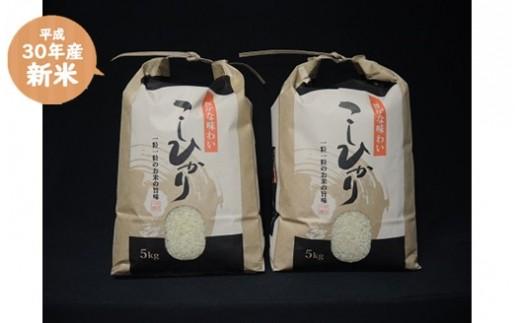 095 ②大沼ファームの【30年産・精米】コシヒカリ10kg