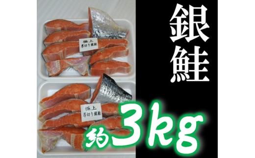 c10-014 びっくり!銀鮭!約3Kg