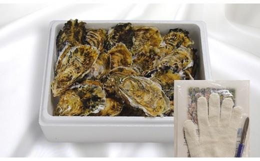I-55生食用浦村牡蠣20個入りセット
