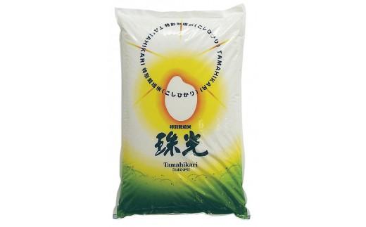 J-17特別栽培米 コシヒカリ 珠光