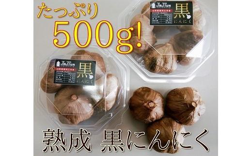発酵熟成 黒にんにく(たっぷり 500g!)010-G19