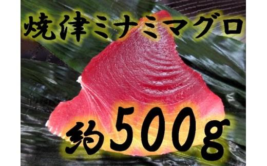 c10-049 焼津ミナミマグロ スキンレスコース