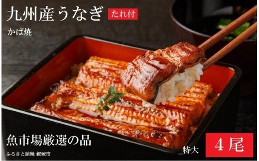 【B-053】魚市場厳選 九州産うなぎ蒲焼(特大サイズ4尾)