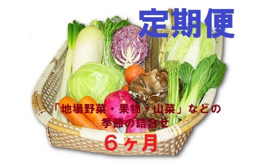 【F15】定期便・6ヶ月 能代の恵み 地場野菜