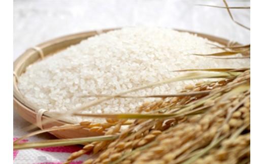 【30年度産】【新米】5㎏ 数量限定 幻の銘石波動角閃石使用のお米