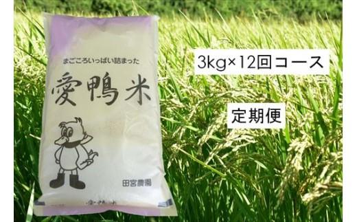【定期便】アイガモと一緒に育てたお米「愛鴨米・玄米」3kg×12回