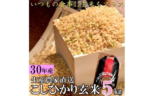 59-01川南町産こしひかり(玄米)