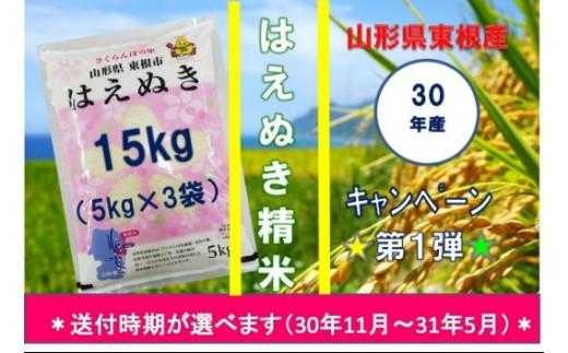 30年産はえぬき精米15kg(送付時期が選べます)JA提供