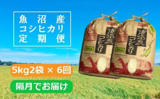 魚沼産コシヒカリ定期便5kg2袋×6回 /隔月でお届け