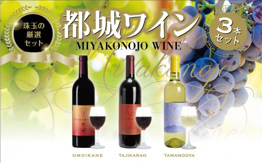MA-2010_都城ワイナリーの辛口ワインセット