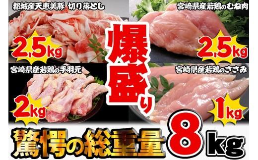 MK-6506_都城産天恵美豚&宮崎県産若鶏セット【爆盛】8kg!