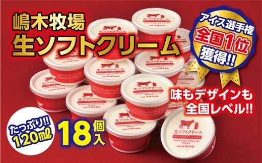 A31-1【味も個数も全国最高レベル!】 牧場の生ソフトクリーム18個