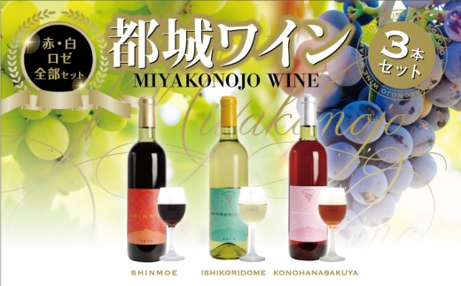 MJ-2004_至福の赤・白・ロゼワイン3本セット